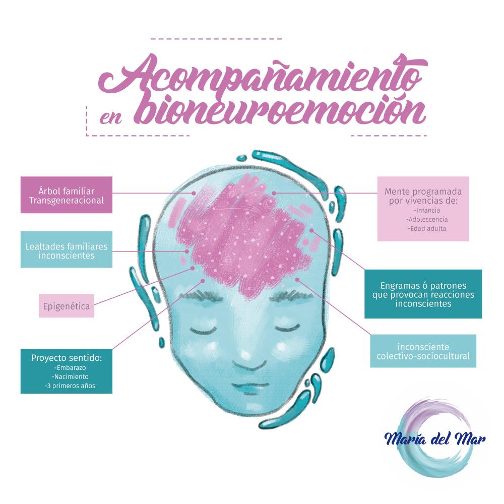 infografico acompañamiento en bioneuroemoción epigenética mente programada proyecto sentido árbol familiar